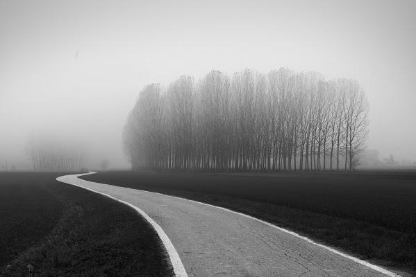 la strada nella nebbia di Francescogiacomo
