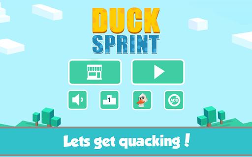 Bouncy Duck