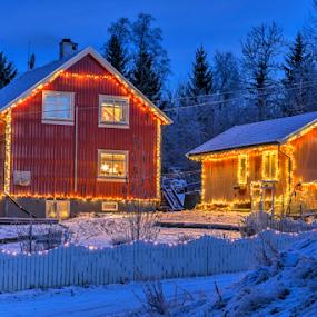 Winter lights by Johannes Mikkelsen - Public Holidays Christmas