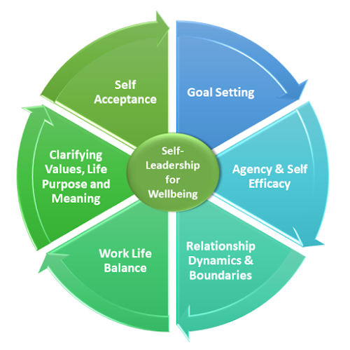 Diagram showing 6 elements of the Lifeflowbalance Coachinf Approach