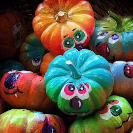 Mini Pumpkins by Millieanne T - Public Holidays Halloween