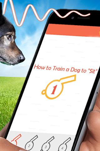 Dog Training At Home Free- screenshot