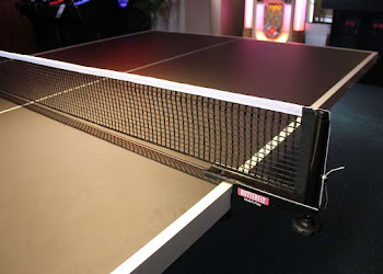 Custom Black & White Table Tennis with Butterfll Net