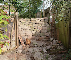 Rebuilt dry stone wall in Berkeley
