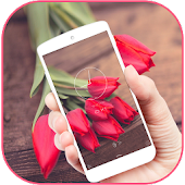 Red Tulip Bloom Aroma Theme