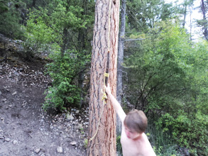 Photo: Next stop the rope swing around the corner of the rock.