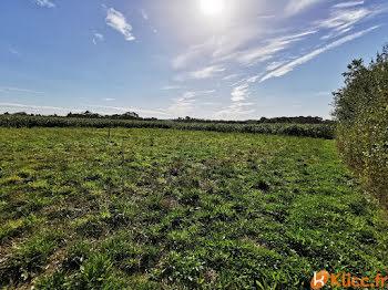 terrain à Longueville-sur-Scie (76)