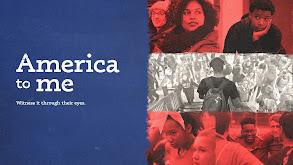 America to Me thumbnail