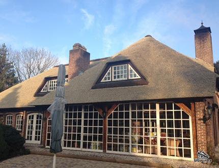Elegancki dom ze sztuczną trzciną na dachu