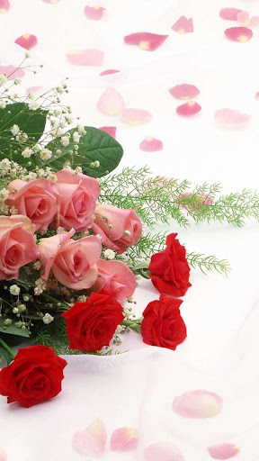 Rose Wallpaper, Floral, Flower Background: Rosely  screenshots 12