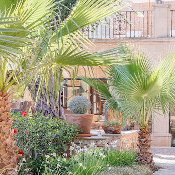 Cal Reiet Palms