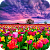 Flower Fields Live Wallpaper file APK for Gaming PC/PS3/PS4 Smart TV