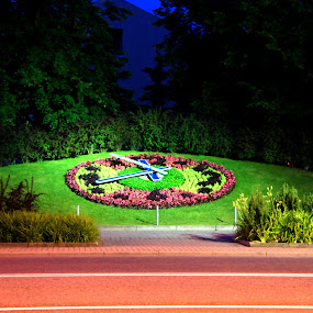 flower clock by Oleg Verjovkin - Nature Up Close Gardens & Produce ( clock, ventspils, latvia, evening, flower )
