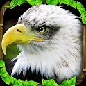 Eagle Simulator™ icon