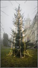 Photo: Calea Victoriei, Nr.31 - Parcul Bisericii Ortodoxe - 2017.12.26