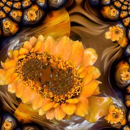 flower fractal by Paul Wante - Digital Art Abstract ( digital, art, fractal, abstract, flower )