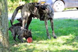Photo: spelen met mama (wit en roze)