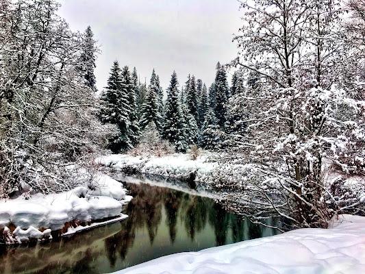 I colori dell'inverno di marchizio