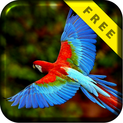 Parrot Tropical Live Wallpaper