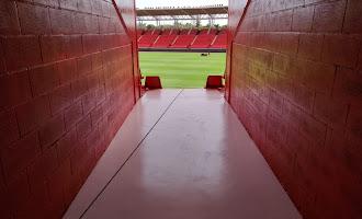 Pasen y vean: parece otro Estadio