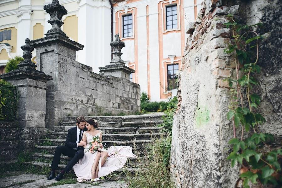 Свадебный фотограф Андрей Волошин (AVoloshyn). Фотография от 23.10.2017