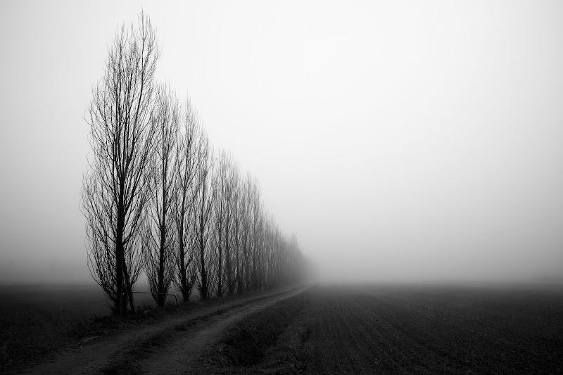 Verso il vuoto, nella nebbia a perdita d'occhio di Tindara