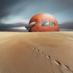 Pumpkin House by Dariusz Klimczak - Digital Art Abstract ( sand, desert, pumpkin, square, surreal, pumpkins, halloween,  )