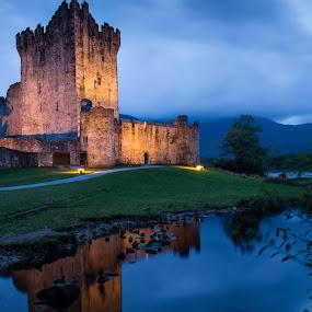 Castello di Ross by Federica Violin - Buildings & Architecture Public & Historical ( castello di ross, killarney, irlanda )