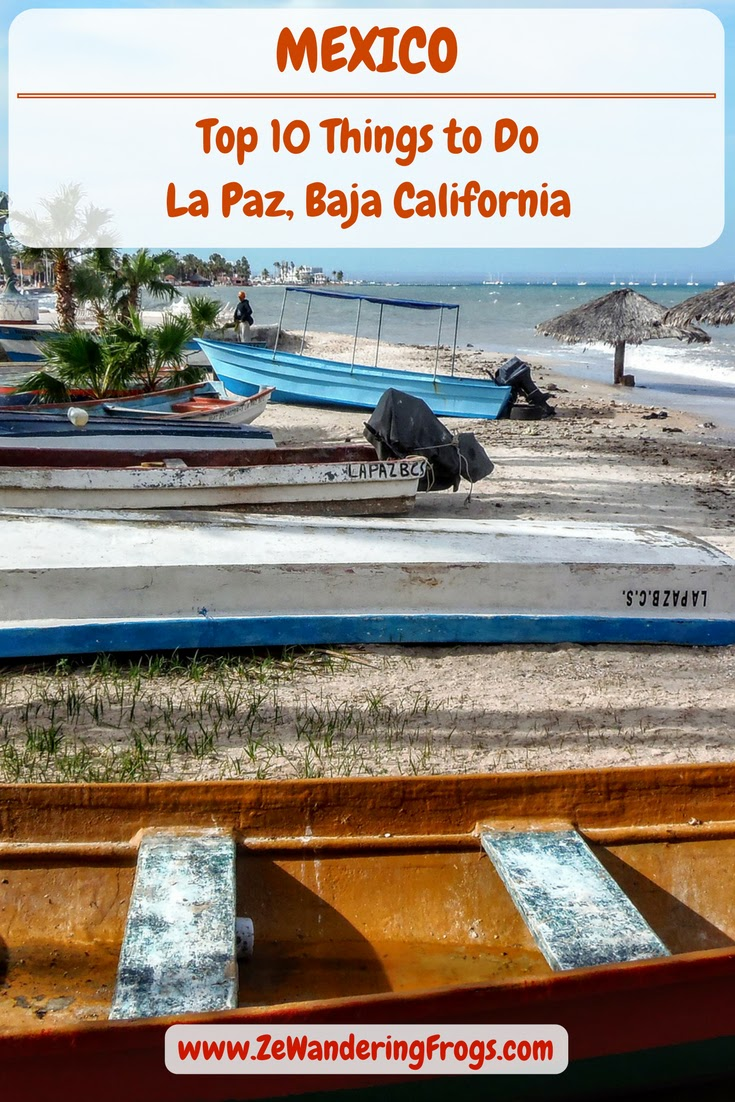 #Mexico // #LaPaz Top 10 Things To Do & #Activities, #Baja California // #Adventure Travel Ze Wandering Frogs