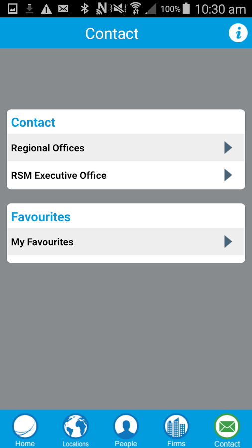 RSM International- screenshot