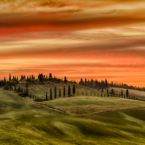 Sunset by Maurizio Martini - Landscapes Sunsets & Sunrises ( hills, tuscany, sunset, day, morning, #GARYFONGDRAMATICLIGHT, #WTFBOBDAVIS,  )