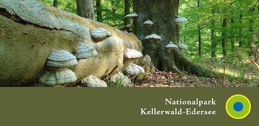 Nationalpark KellerwaldEdersee app (apk) free download for Android/PC/Windows screenshot