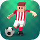 Tiny Striker: World Football (game)