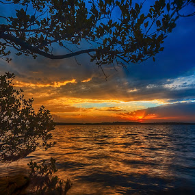Sunset on the Shoalhaven by Andy Hutchinson - Landscapes Sunsets & Sunrises ( sunset, river )