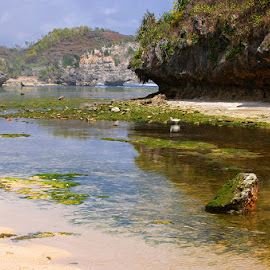 Drini Beach by Mulawardi Sutanto - Landscapes Travel ( drini, mantap, yogyakarta, pantai, beach, wonosari, travel )