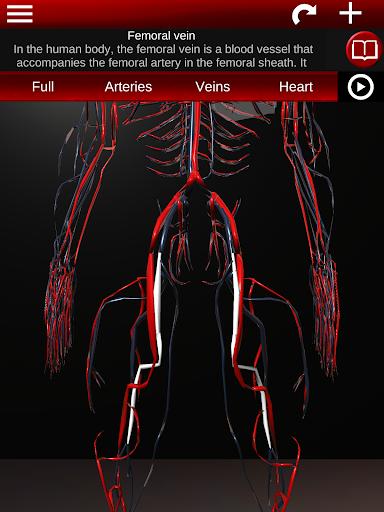 Circulatory System in 3D (Anatomy) 1.58 screenshots 22