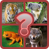 Guess the Animal Quiz