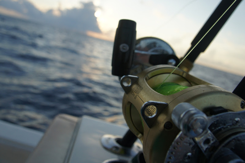 Photo: 80 miles offshore, trolling out of South Padre, Texas