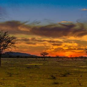 Namibia sunset by Lourens Lee Wildlife Photography - Landscapes Sunsets & Sunrises ( dawn, sunset, sunrise, landscape, dusk,  )