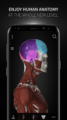 Anatomyka - Interactive 3D Human Anatomy 1.1.1 screenshots 1