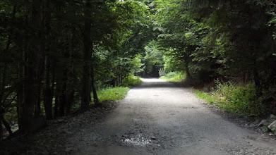 Photo: Kis-Olt völgye