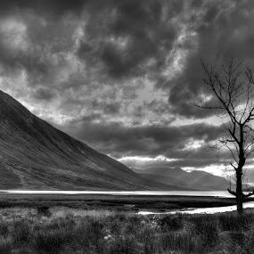 Lock Etive by Phil Portus - Landscapes Mountains & Hills ( scotland, sky, tree, lock, white, lake, etive, landscape, black, black and white, b and w, b&w, monotone, mono-tone )