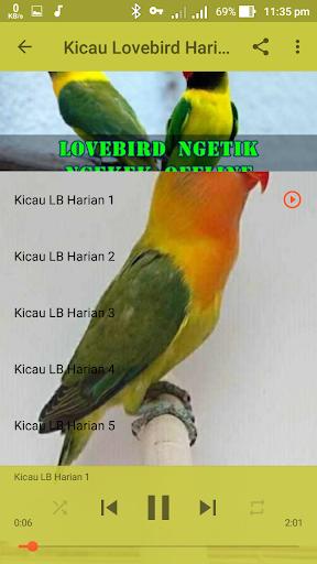 Lovebird Ngetik Ngekek Offline 1.1 screenshots 5