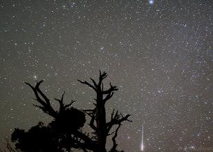 Photo: Leonid Meteor Shower 2010