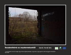 Photo: RO: Scuze naturii  EN: Apology to nature