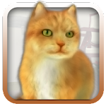 Talking Lovely Cat Icon