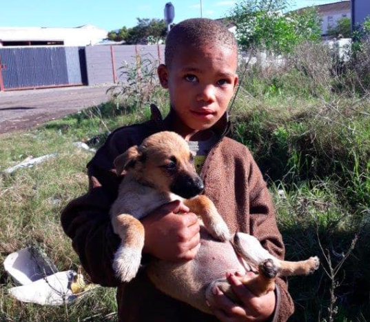 Two young girls from Cape Town exchanged their packet of NikNaks to save their sick puppy.