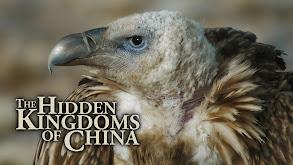 The Hidden Kingdoms of China thumbnail