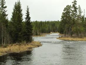 Photo: Gysån (nedre vid Långforsvägen)