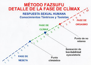 Photo: ESPAÑOL: Método fazsufu – Respuesta sexual humana y detalle de la fase de clímax. ENGLISH: Method fazsufu - Human sexual response and detail of the climax phase. CHINO: Fazsufu 方法 - 人類性反應和高潮階段詳細資訊. ÁRABE: Fazsufu الأسلوب - الاستجابة الجنسية البشرية - ذروة المرحلة